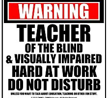 Warning Teacher Of The Blind & Visually Impaired Hard At Work Do Not Disturb by cmmei