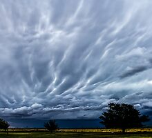 Afternoon Clouds (Dying mammatus) by Qnita