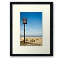 Fire Basket Framed Print