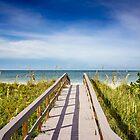 Board Walking a Treasure Island Beach Get Away by Casey Peel