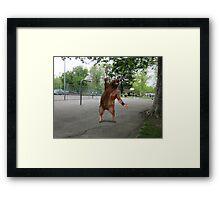 ManBearPig Framed Print