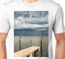 Pelican Pier St Petersburg Unisex T-Shirt