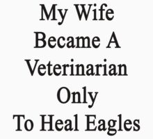 My Wife Became A Veterinarian Only To Heal Eagles  by supernova23