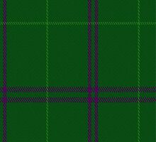 02055 Walters Clan/Family Tartan Fabric Print Iphone Case by Detnecs2013