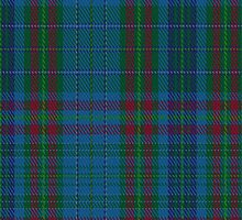 02064 Watkins of Wales Clan/Family Tartan Fabric Print Iphone Case by Detnecs2013