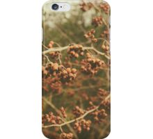 Nature's beauties iPhone Case/Skin