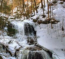 Winter Is Loosing Its Grip On Tuscarora Falls by Gene Walls