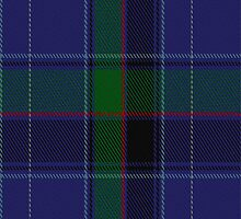 02088 Westminster College Tartan Fabric Print Iphone Case by Detnecs2013