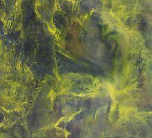 Lightning by Melissa Lackman