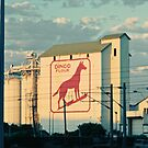 Dingo Flour, Perth WA by Emelie Coffey