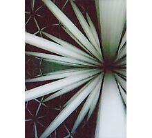 Modular Function Photographic Print