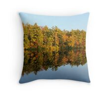 Autunm Reflection Throw Pillow
