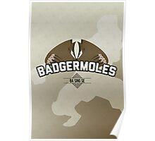 Ba Sing Se Badgermoles Poster