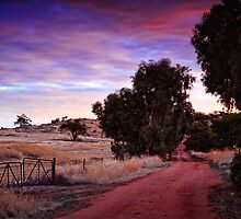 A Walk Down The Lane by Paul Amyes