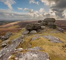 Birch Tor  by asc-photography