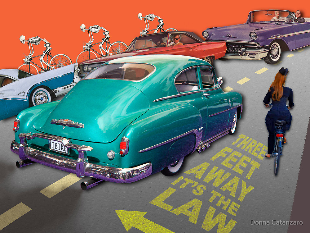 Three Feet Away, It's the Law! by Donna Catanzaro