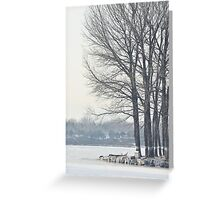 freezing and quiet winter at Old Summer Palace, Beijing Greeting Card