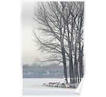freezing and quiet winter at Old Summer Palace, Beijing Poster