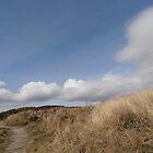Tyrella Beach Co. Down N. Ireland by Jacqueline Eirian McKay