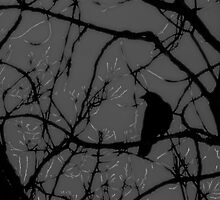 Crow Silhouette Art Photo by Annette  Clark