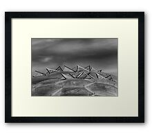 Eden Project Roof 2 Black and White Framed Print