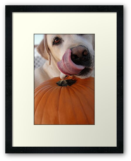 Halloween Golden Lab by amyschuldies