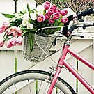 BIKE RIDER&#x27;S DELIGHT GREETING CARD by dagokid