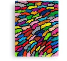 THE RAINBOW COLORS Canvas Print