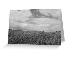 Clouds and Grass Greeting Card