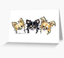 Long Hair Chihuahua Trio Greeting Card