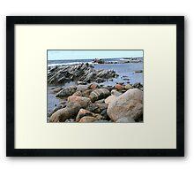 Rock Buffet Framed Print