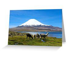 Chungara Lake, Chile 2 Greeting Card