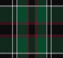 02104 Wild Highlanders Tartan Fabric Print Iphone Case by Detnecs2013