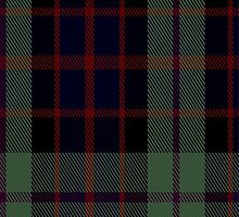 02107 Williamson Tartan Fabric Print Iphone Case by Detnecs2013