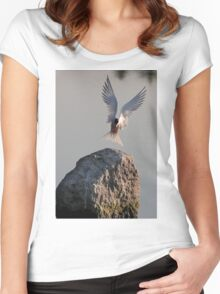 Have fish, will land - Common Tern Women's Fitted Scoop T-Shirt