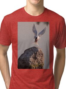 Have fish, will land - Common Tern Tri-blend T-Shirt