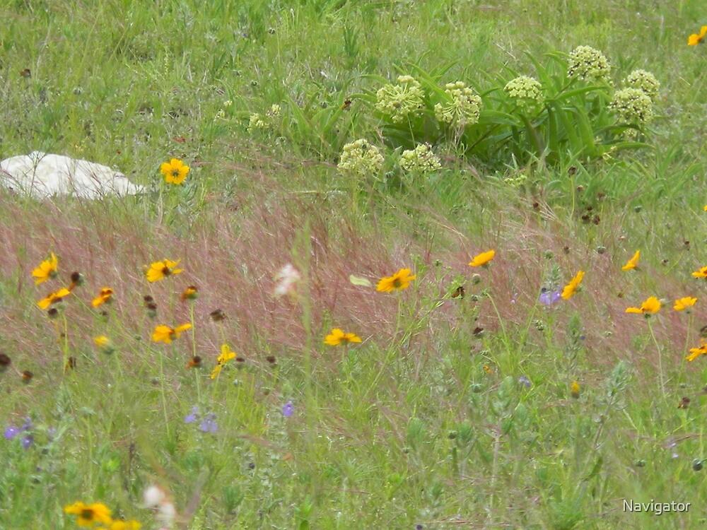 A Meadow Scene by Navigator