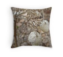 Dried Lace Cap Hydrangea Throw Pillow