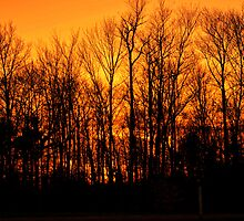 Sunset on 4-17-13 by Penny Rinker