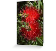 Red Things Greeting Card