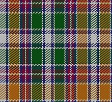 02123 Wombles #4 Tartan Fabric Print Iphone Case by Detnecs2013