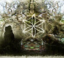 the tree stones  by Antony Potts