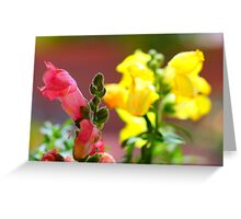 A Beautiful Blur Greeting Card