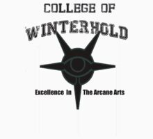 College of WInterhold by libby95