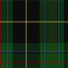 02145 Vipont (Yellow line) Clan/Family Tartan Fabric Print Iphone Case by Detnecs2013