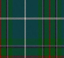02146 Vipont (White line) Clan/Family Tartan Fabric Print Iphone Case by Detnecs2013