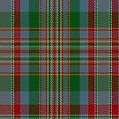 02149 Victoria County, Texas District Tartan Fabric Print Iphone Case by Detnecs2013