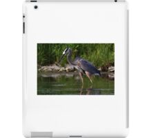 Great Blue Heron catches fish iPad Case/Skin