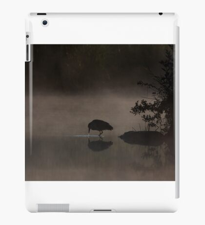 Black-crowned Night heron iPad Case/Skin