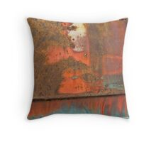 Rusty Door Panel Throw Pillow